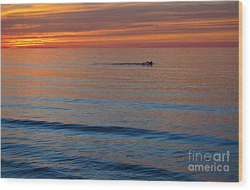 Wood Print featuring the photograph Sunset Swimmer by Maria Janicki