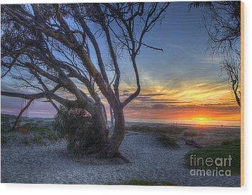 Sunset Swing Wood Print