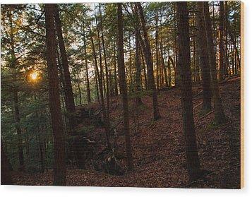Wood Print featuring the photograph Sunset Through The Hemlocks by Haren Images- Kriss Haren