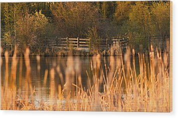 Sunset Tranquility Wood Print by Valerie Pond