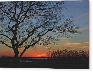 Sunset Tree In Ocean City Md Wood Print by Bill Swartwout