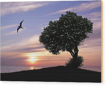 Sunset Tree Of Tranquility Wood Print