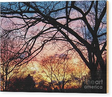 Sunset Under The Dogwoods Wood Print