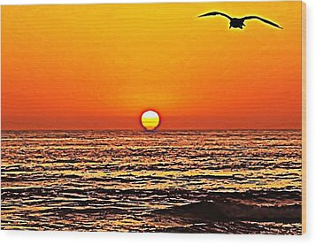 Sunset With Seagull Wood Print by Sharon Soberon