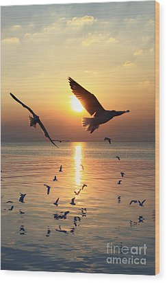Sunset With Seagull Wood Print by Tosporn Preede