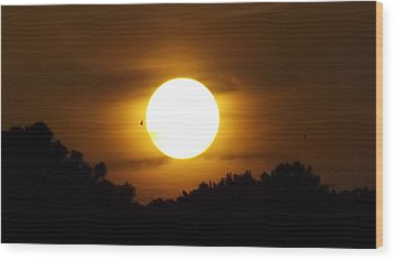 Sunset With Soaring Birds Wood Print by Keegan Hall