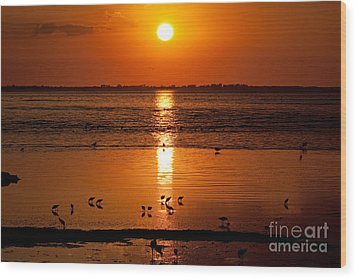 Wood Print featuring the photograph Sunset With The Birds Photo by Meg Rousher