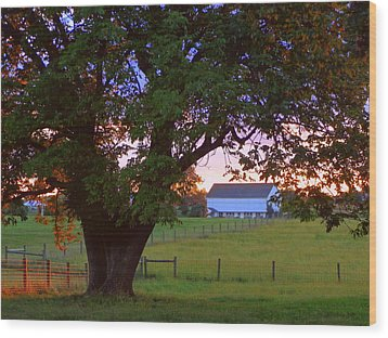 Wood Print featuring the photograph Sunset With Tree by Joseph Skompski