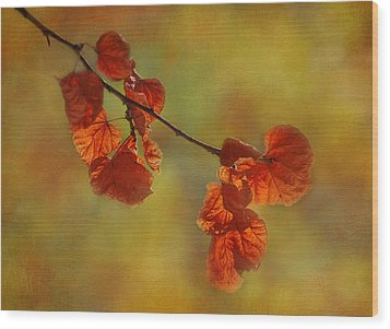 Sunshine And Red  Wood Print by Ivelina G