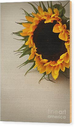 Wood Print featuring the photograph Sunshine by Eden Baed