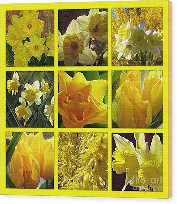 Sunshine Gold Picture Window Wood Print