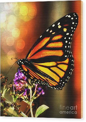 Sunshine Monarch  Wood Print by Mindy Bench