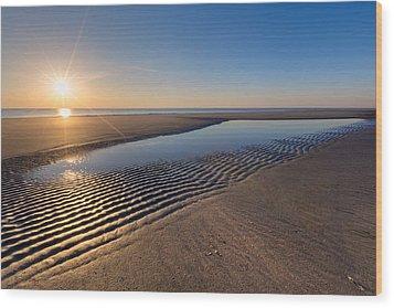 Sunshine On The Beach Wood Print by Debra and Dave Vanderlaan