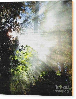 Sunstream Wood Print by Shasta Eone
