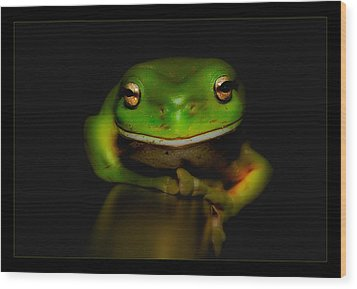 Super Frog 01 Wood Print by Kevin Chippindall