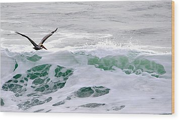 Wood Print featuring the photograph Surf N Pelican by AJ  Schibig