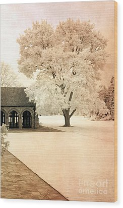 Surreal Ethereal Infrared Sepia Nature Landscape Wood Print by Kathy Fornal