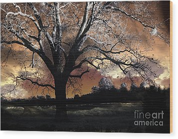 Surreal Fantasy Gothic Trees Nature Sunset Wood Print by Kathy Fornal