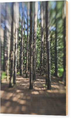 Surreal Forest Wood Print