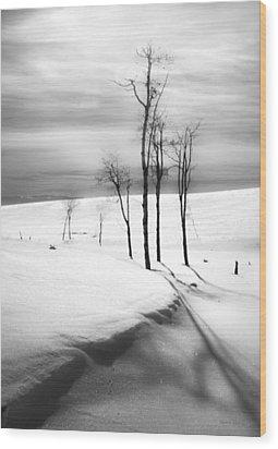 Surreal Snowscape 2 Wood Print by Theresa Tahara
