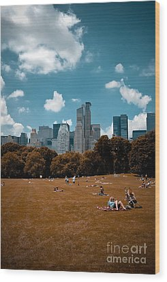 Surreal Summer Day In Central Park Wood Print by Amy Cicconi
