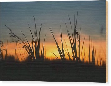 Surreal Sunset Wood Print