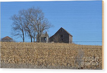 Surrounded By Corn Wood Print by Renie Rutten