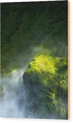 Surrounded By Mist   Vertical Wood Print by Mary Lee Dereske