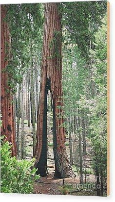 Survivor Wood Print by Ellen Cotton