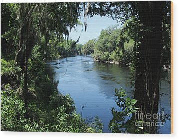 Suwanee River View Wood Print by Theresa Willingham