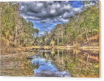 Wood Print featuring the photograph Suwannee River Scene by Donald Williams
