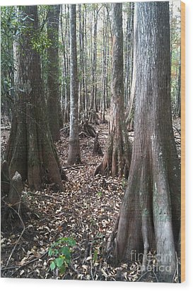 Swamp Edge Portrait Wood Print by D Wallace