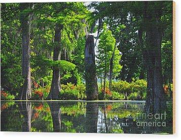 Swamp In Bloom Wood Print