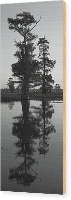 Wood Print featuring the photograph Swamp Mirror by Silke Brubaker