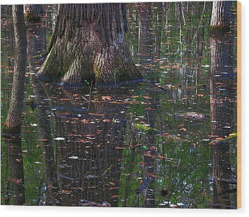 Swamp Wood Print by Rowana Ray