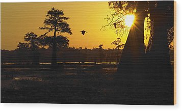 Wood Print featuring the photograph Swamp Sunrise by Silke Brubaker