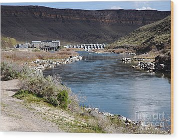 945a Swan Falls Dam Snake River Birds Of Prey Area Wood Print by NightVisions