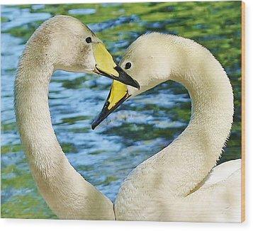 Swan Heart Wood Print by Paulette Thomas