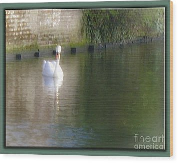 Wood Print featuring the photograph Swan In The Canal by Victoria Harrington