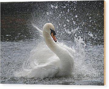 Swan Wood Print by Kathy Gibbons