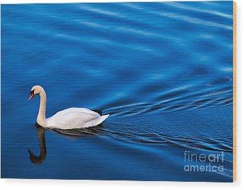 Swan Lake Wood Print by Adrian Evans