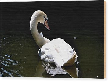 Wood Print featuring the photograph Swan Lake by Deena Stoddard
