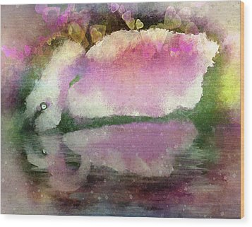 Swan Lake Reflection Wood Print by Jill Balsam