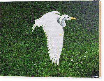 Swan-oil Painting Wood Print by Rejeena Niaz