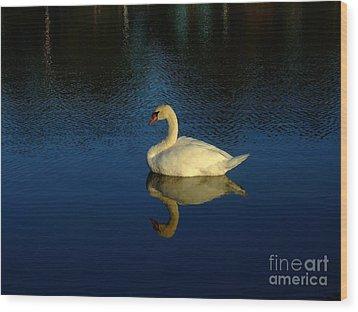 Swan Reflection Wood Print by Bob Sample