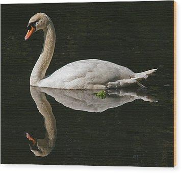 Swan Reflection Wood Print by John Topman