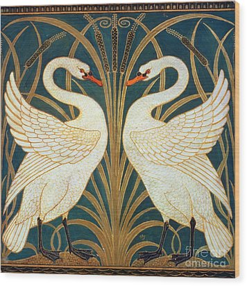 Swan Rush And Iris Wood Print