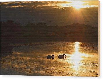 Swan Song Wood Print by AnnaJo Vahle