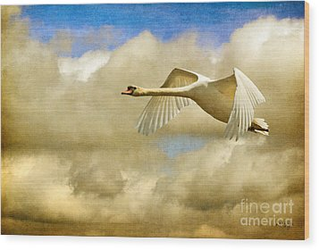 Swan Song Wood Print by Lois Bryan