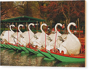 Wood Print featuring the photograph Swans In Boston Common by James Kirkikis